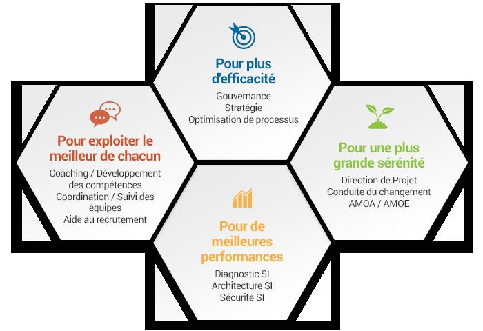 infographie de la direction des systèmes d'information wennev
