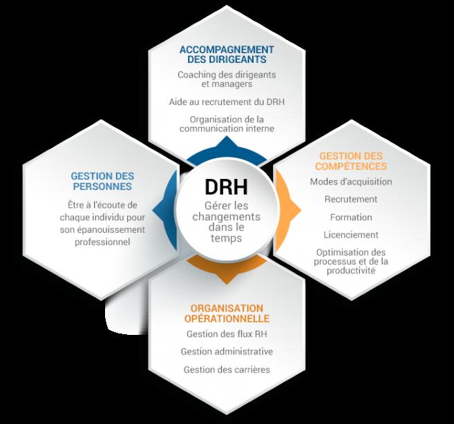 schéma de la DRH à temps partagé chez Wennev